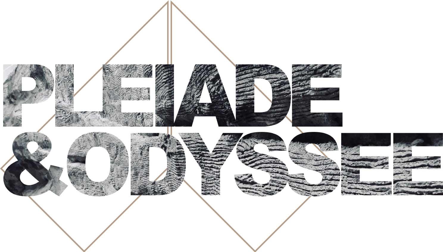 détail ciment de l'oeuvre Pléiade et Odyssée